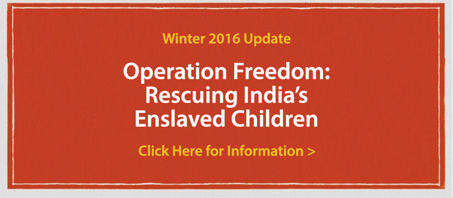 operation-freedom